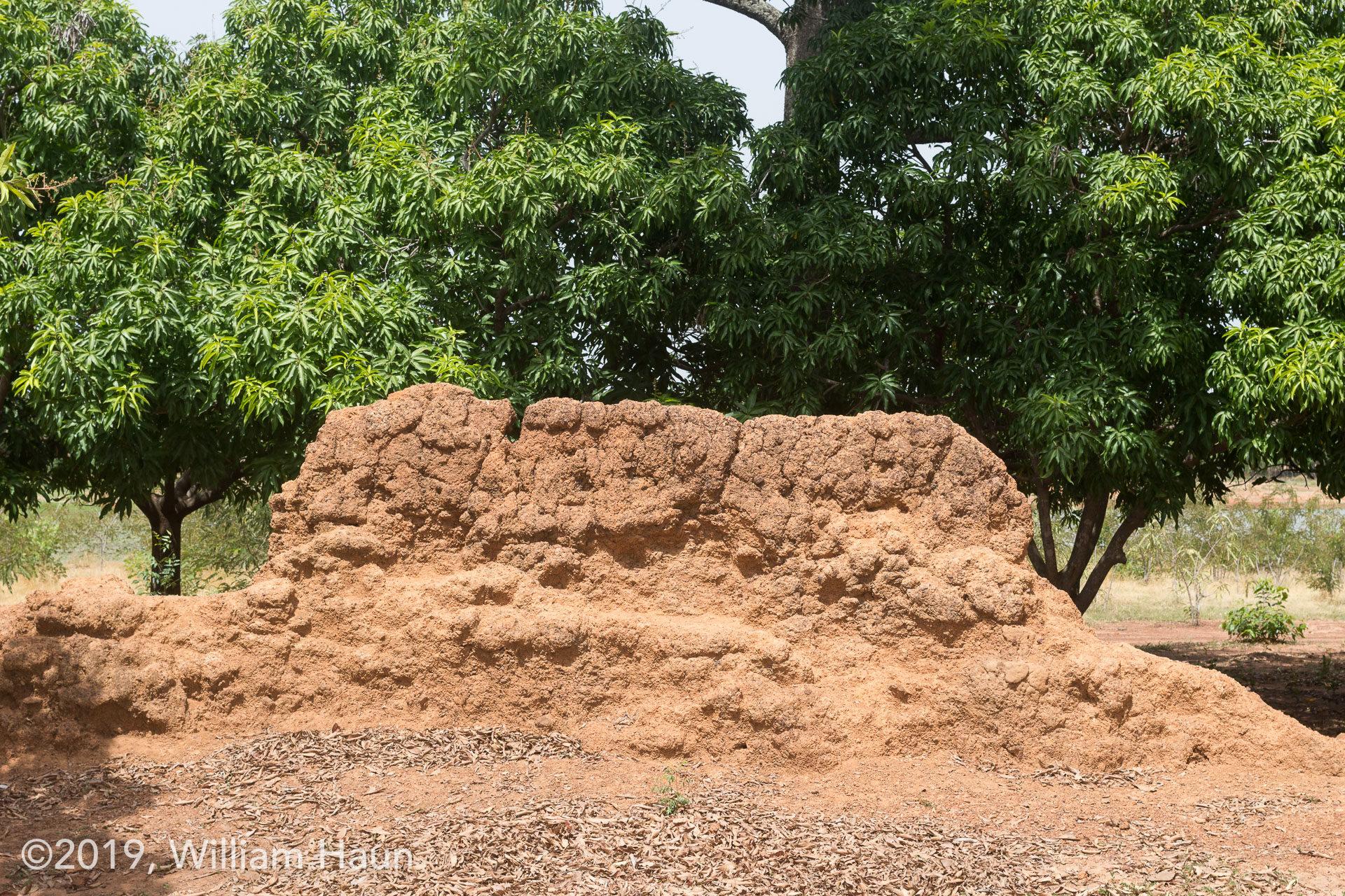 Nalerigu Defense Wall
