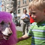 Trey meets the infamous Pink Poodle