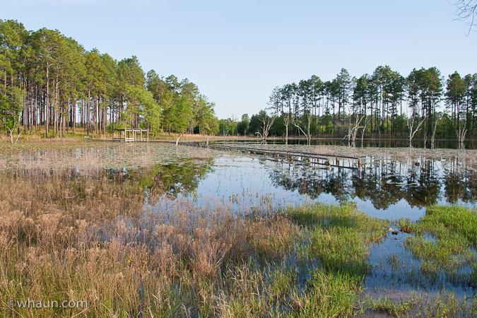 seminole-state-park-05.jpg
