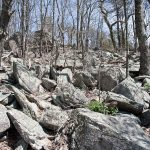 Rocks and boulders were all along the trail