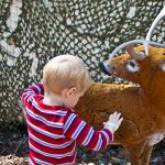 Trey consoles a wounded deer