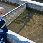 Trey watches the fish at the Lake Burton Trout Hatchery adjacent to Moccasin Creek State Park