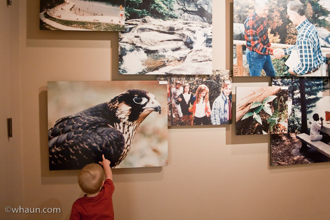One of several great photo displays in the interpretive center at Tallulah Gorge State Park