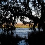 fort-mcallister-historic-park-07.jpg