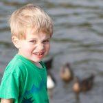 Hugo checks out the ducks at Lake Wildwood