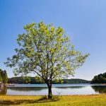tugaloo-state-park-04