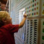 Trey admires all the gummi bear molds