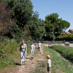 Heidi, Trey, Nicolas, and Helene walk a nature trail in Lattes, France