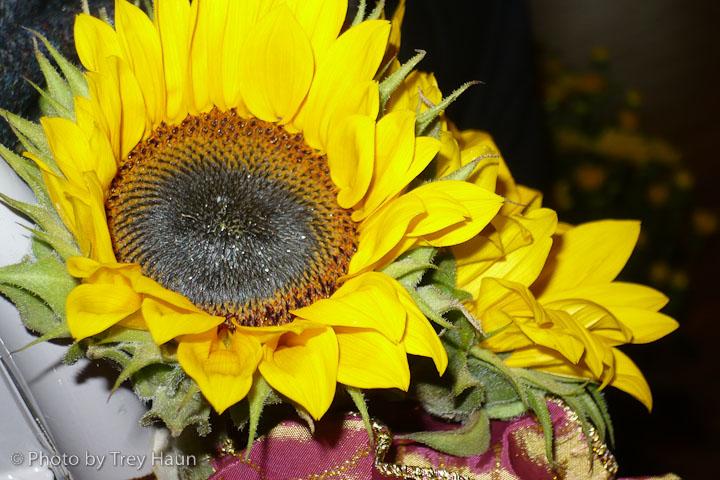The flower shot.