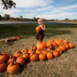 elliot-farms-pumpkin-patch-10.jpg