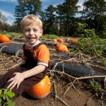 elliot-farms-pumpkin-patch-14.jpg
