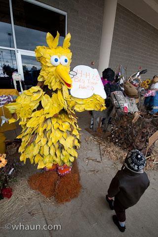 A Big Bird scarecrow in the Fair's Scarecrow competition