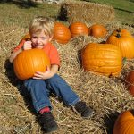 Trey in the pumpkin patch at the Fall Festival.